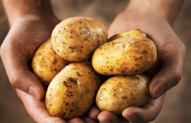 Могат ли картофите да ни помогнат да отслабнем?