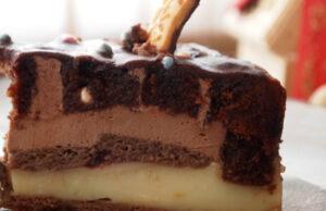 sharena-lesna-torta-3