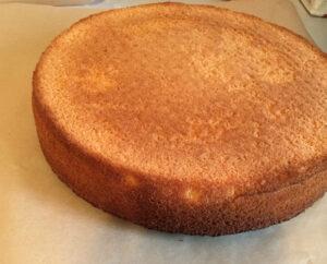 torta-iznenada-1