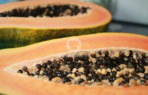Папаята - чуден лек с екзотичен вкус