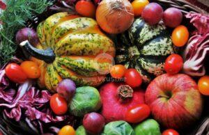 Какво да хапваме през есента?